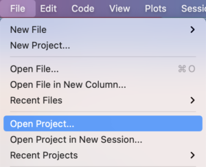 The Open Project option from the file menu.